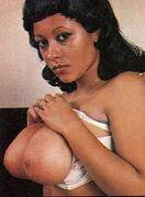 Donna Ambrose - Vintage Erotica Forums